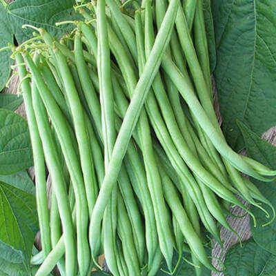 super beans